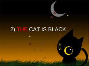 2) THE CAT IS BLACK