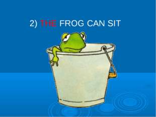 2) THE FROG CAN SIT