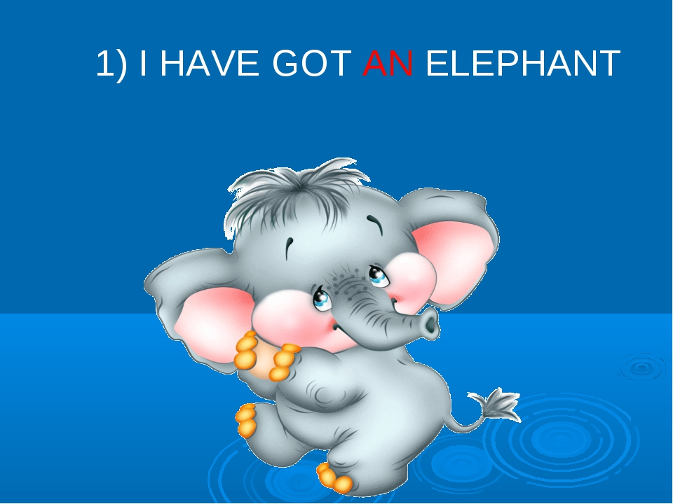 1) I HAVE GOT AN ELEPHANT