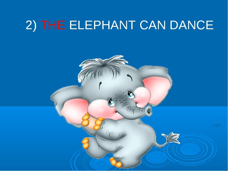 2) THE ELEPHANT CAN DANCE