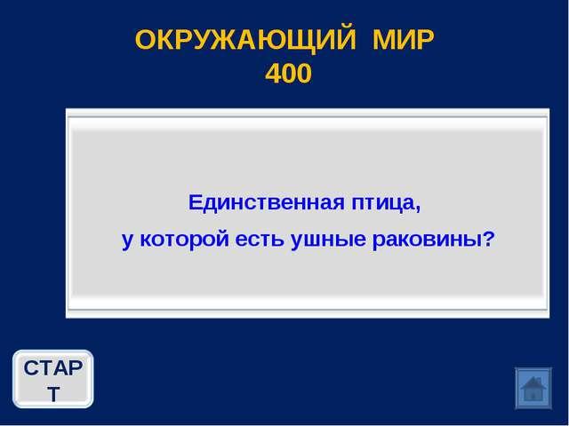 ОКРУЖАЮЩИЙ МИР 400