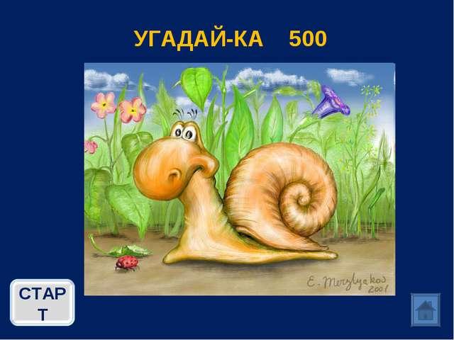 УГАДАЙ-КА 500