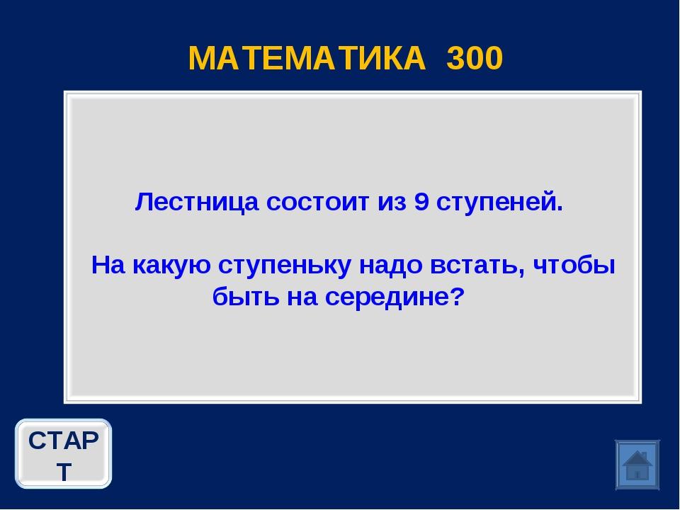 МАТЕМАТИКА 300