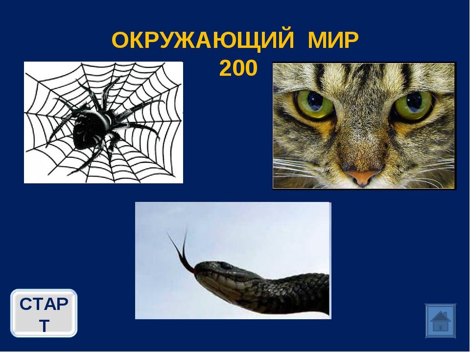 ОКРУЖАЮЩИЙ МИР 200