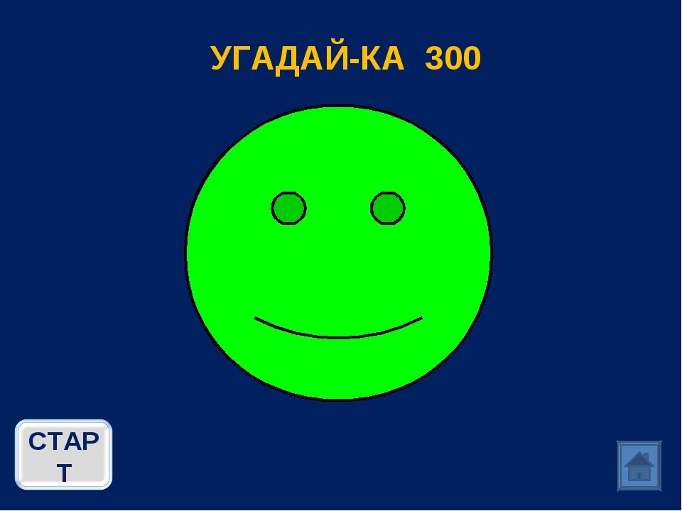 УГАДАЙ-КА 300