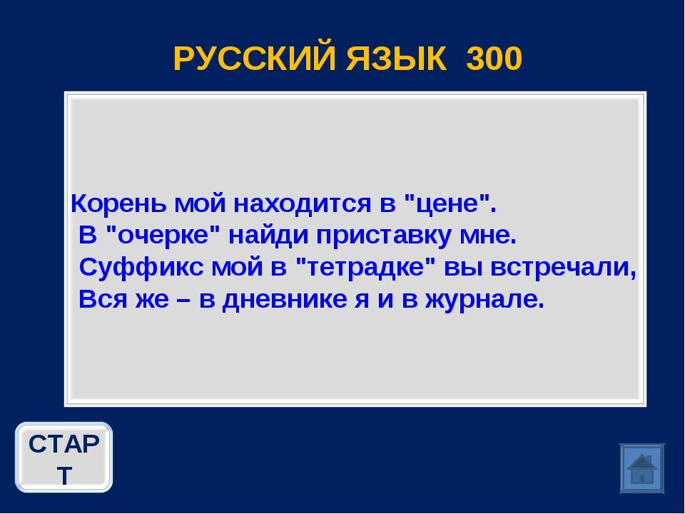 РУССКИЙ ЯЗЫК 300