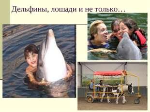 Дельфины, лошади и не только…
