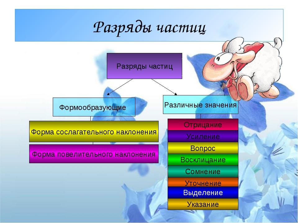 Разряды частиц Разряды частиц Формообразующие Различные значения Отрицание Ус...