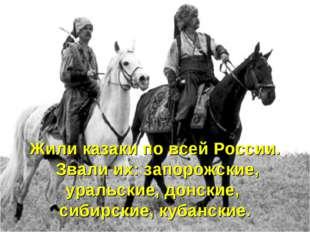 Жили казаки по всей России. Звали их: запорожские, уральские, донские, сибирс