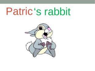 Patric 's rabbit