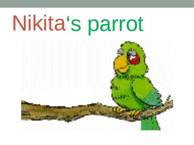 Nikita 's parrot