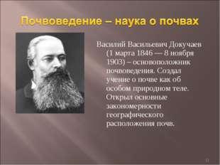 Василий Васильевич Докучаев (1 марта 1846— 8 ноября 1903) – основоположник п