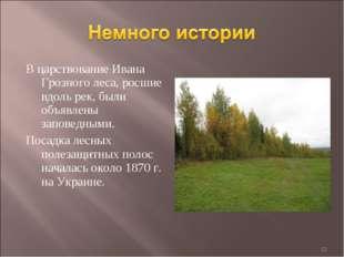 В царствование Ивана Грозного леса, росшие вдоль рек, были объявлены заповедн