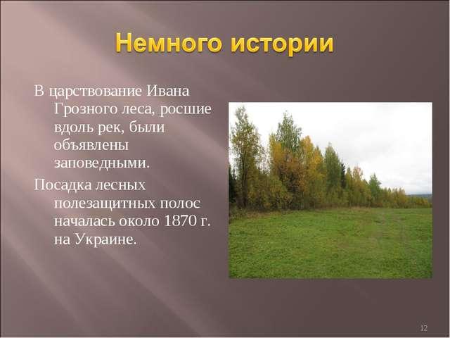 В царствование Ивана Грозного леса, росшие вдоль рек, были объявлены заповедн...