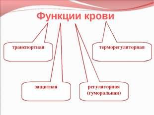 Функции крови транспортная регуляторная (гуморальная) защитная терморегулятор