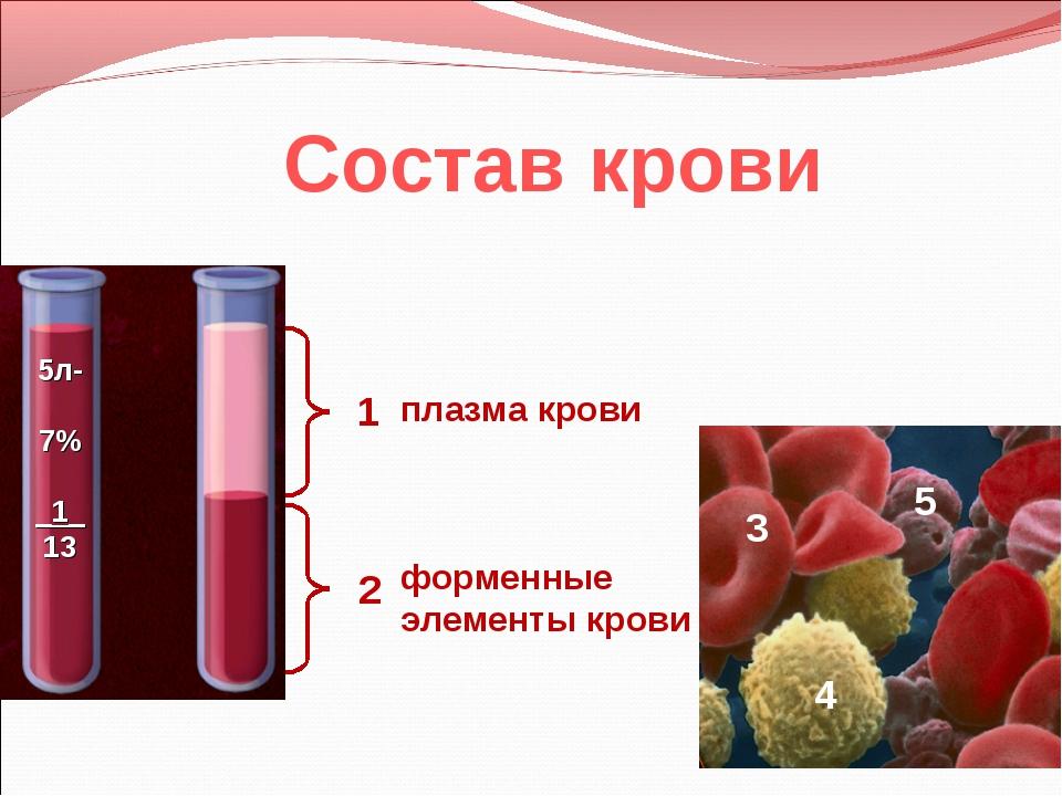 Состав крови 1 2 плазма крови форменные элементы крови 3 4 5 5л- 7% _1_ 13