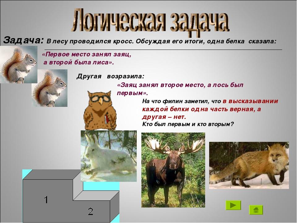 «Заяц занял второе место, а лось был первым». Задача: В лесу проводился кросс...