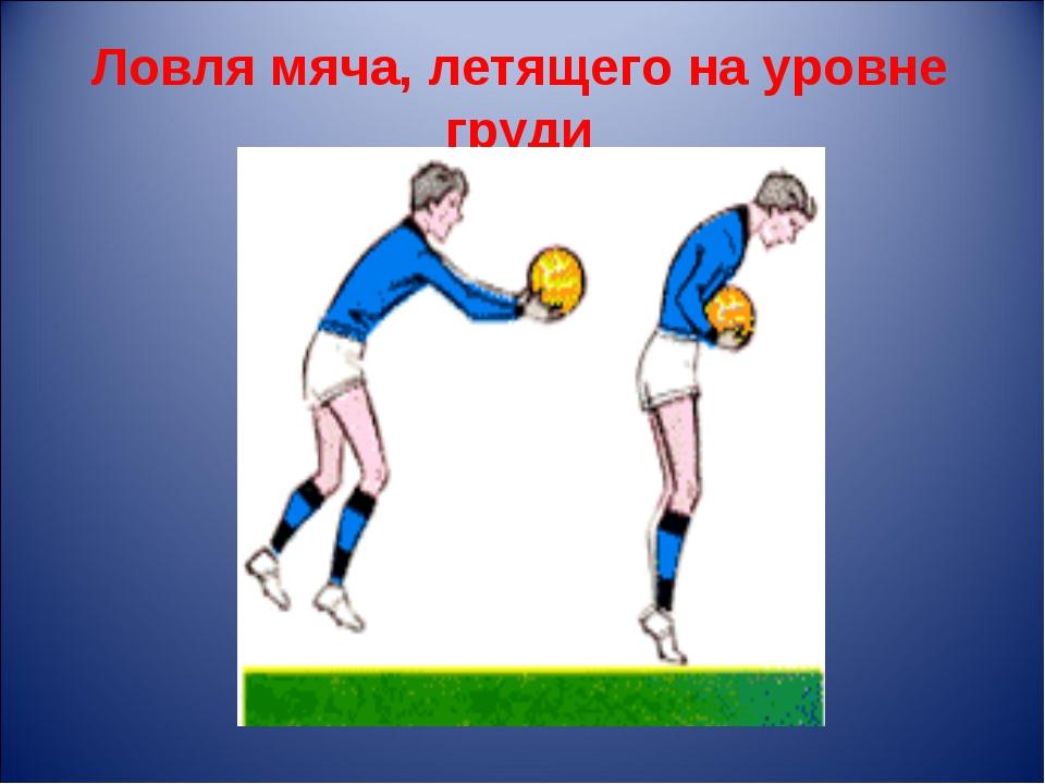 Ловля мяча, летящего на уровне груди
