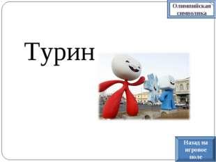 Турин Олимпийская символика Назад на игровое поле