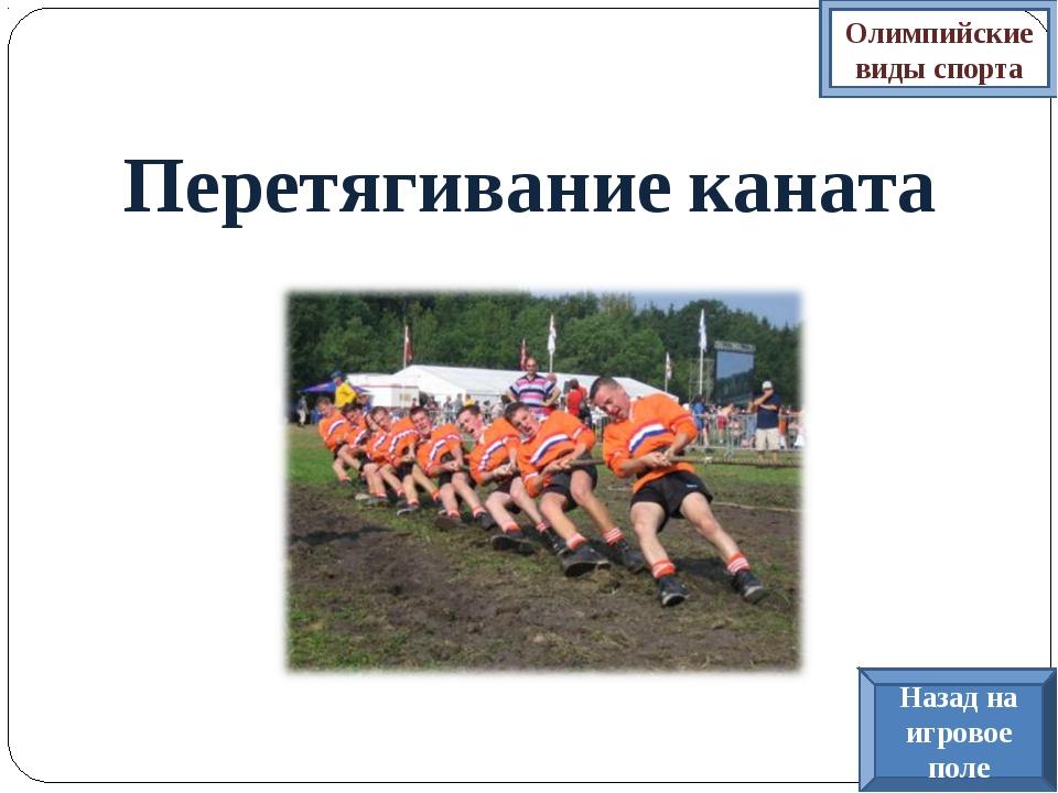 Перетягивание каната Олимпийские виды спорта Назад на игровое поле