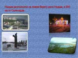 Надым расположен на левом берегу реки Надым, в 290 км от Салехарда.