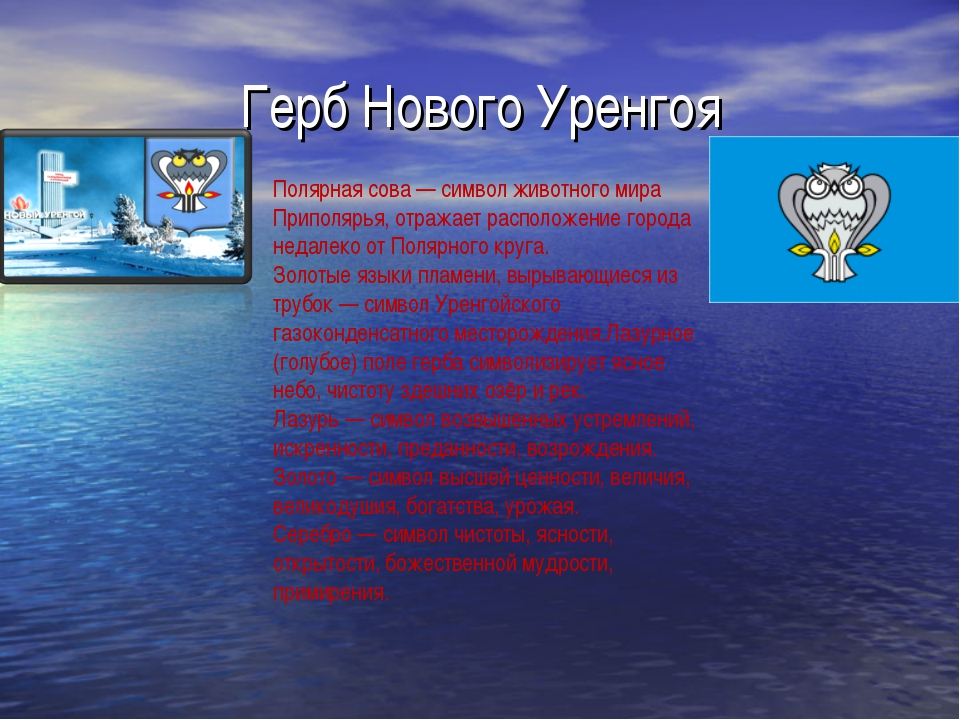 Герб Нового Уренгоя Полярная сова— символ животного мира Приполярья, отражае...