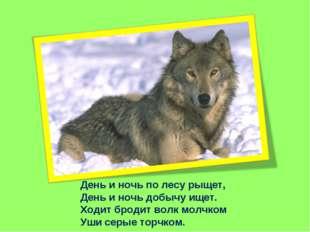 День и ночь по лесу рыщет, День и ночь добычу ищет. Ходит бродит волк молчком