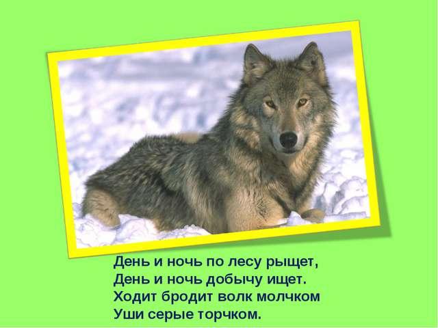 День и ночь по лесу рыщет, День и ночь добычу ищет. Ходит бродит волк молчком...