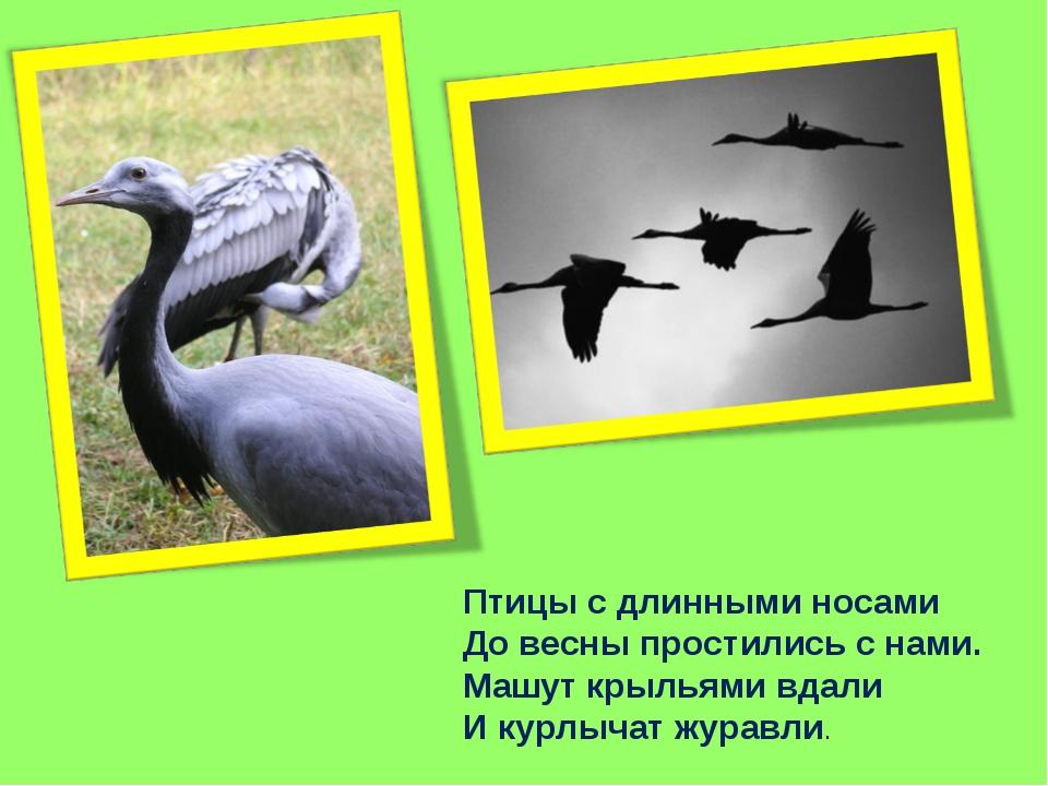 Птицы с длинными носами До весны простились с нами. Машут крыльями вдали И ку...