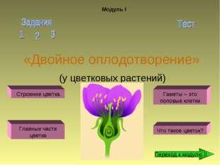 «Двойное оплодотворение» (у цветковых растений) Модуль I Строение цветка Глав