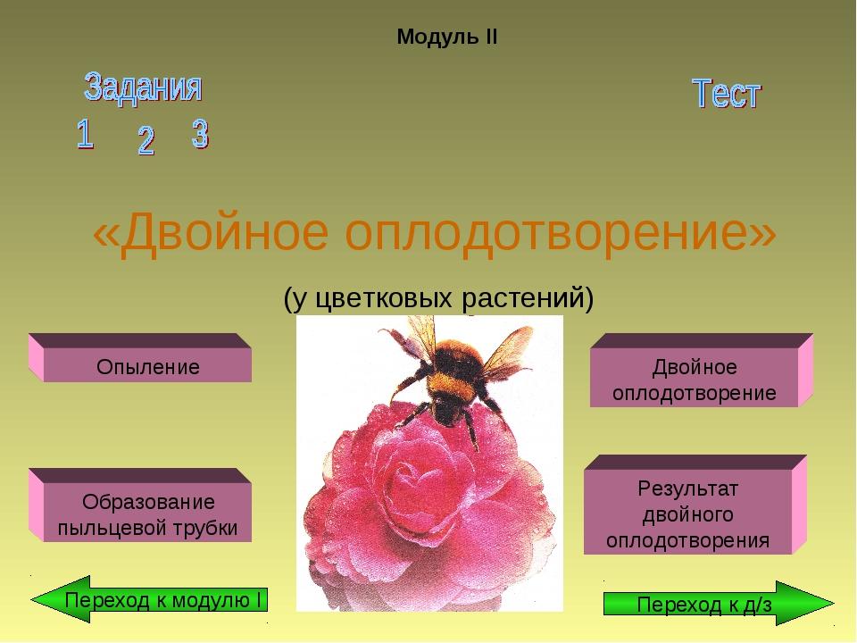 «Двойное оплодотворение» (у цветковых растений) Модуль II Опыление Образовани...