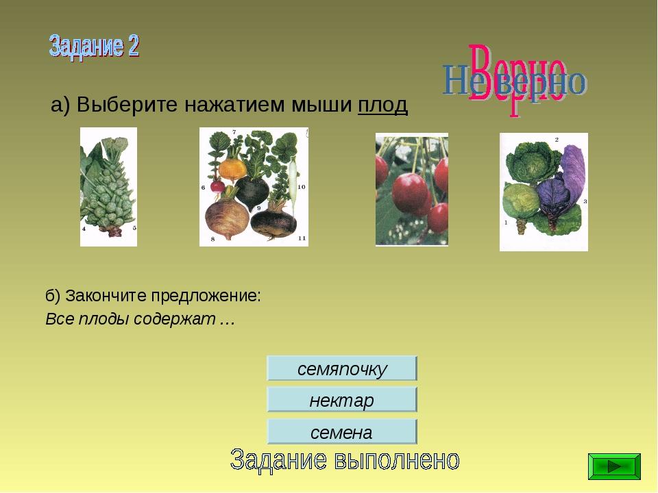 семена семяпочку нектар а) Выберите нажатием мыши плод б) Закончите предложен...