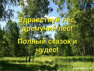 Здравствуй лес, дремучий лес! Полный сказок и чудес! Free Powerpoint Template