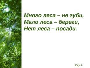 Много леса – не губи, Мало леса – береги, Нет леса – посади. Free Powerpoint