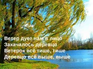 Ветер дует нам в лицо Закачалось деревцо Ветерок всё тише, тише Деревцо всё в