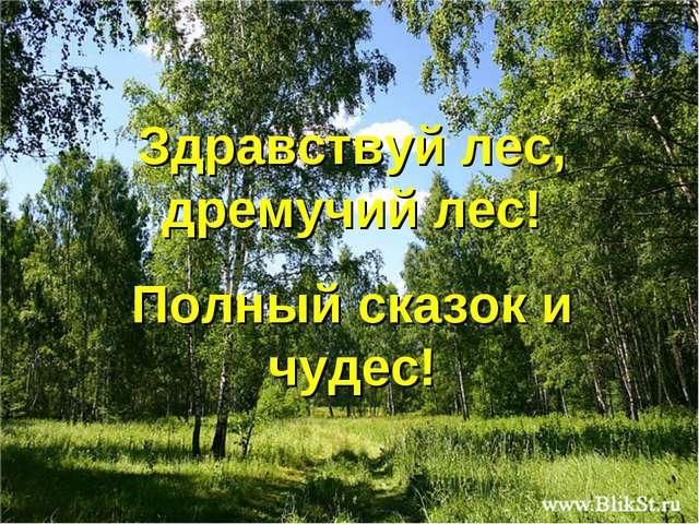 Здравствуй лес, дремучий лес! Полный сказок и чудес! Free Powerpoint Template...
