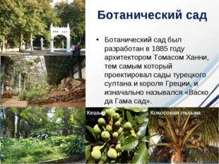 Ботанический сад Ботанический сад был разработан в 1885 году архитектором То