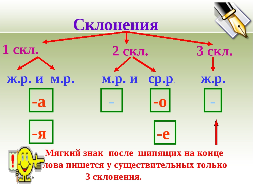 *  Склонения 1 скл. 2 скл. 3 скл. ж.р. и м.р. м.р. и ср.р. ж.р. -а -я - -о...