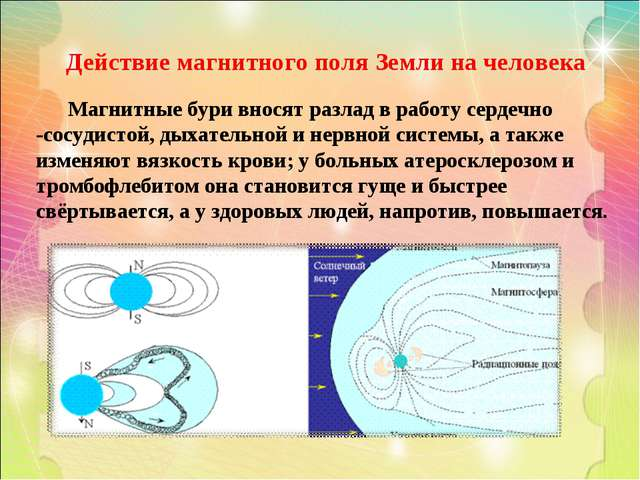 Действие магнитного поля Земли на человека Магнитные бури вносят разлад в раб...
