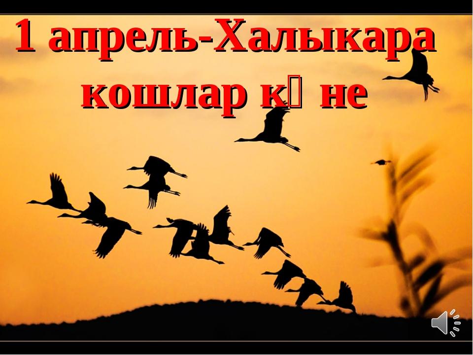 1 апрель-Халыкара кошлар көне