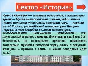 2 В начале XVIII в Петербурге открылся кабинет редкостей - необычное для русс