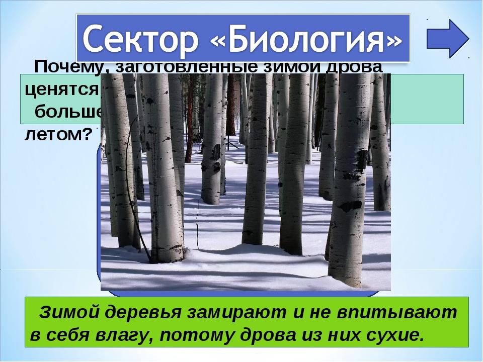 Почему, заготовленные зимой дрова ценятся больше, чем те которые заготовлены...