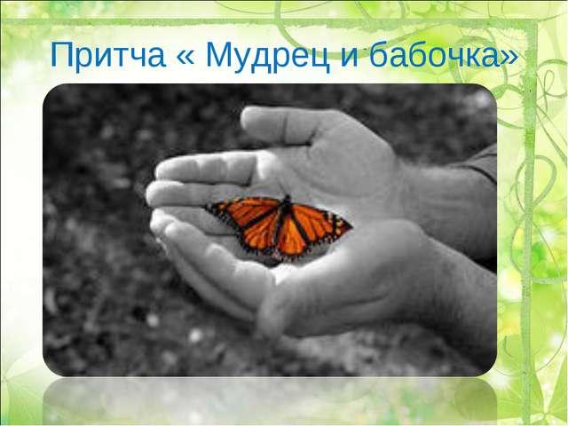 Притча « Мудрец и бабочка»