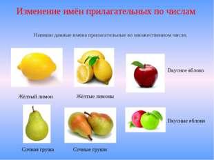 Изменение имён прилагательных по числам Жёлтый лимон Жёлтые лимоны Сочная гру