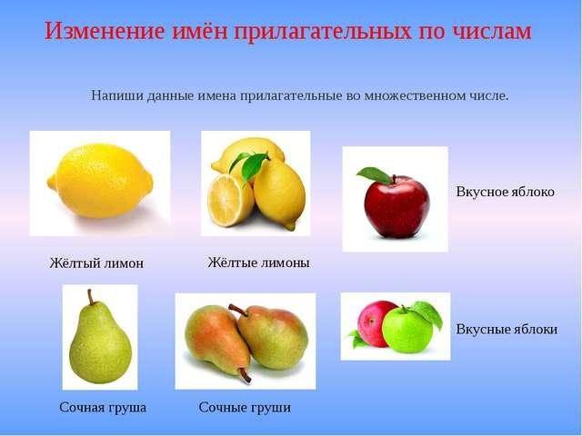 Изменение имён прилагательных по числам Жёлтый лимон Жёлтые лимоны Сочная гру...