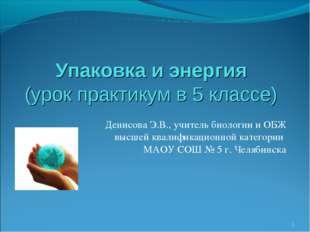 Упаковка и энергия (урок практикум в 5 классе) Денисова Э.В., учитель биологи