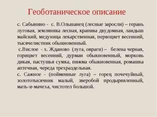 Геоботаническое описание с. Сабынино - с. В.Ольшанец (лесные заросли) – геран
