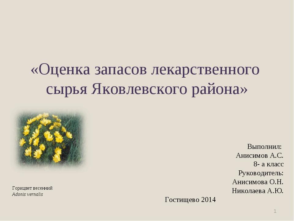 «Оценка запасов лекарственного сырья Яковлевского района» * Выполнил: Анисим...