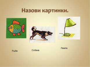 Рыба Собака Лампа