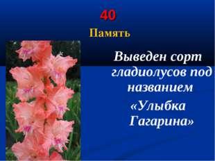40 Память Выведен сорт гладиолусов под названием «Улыбка Гагарина»